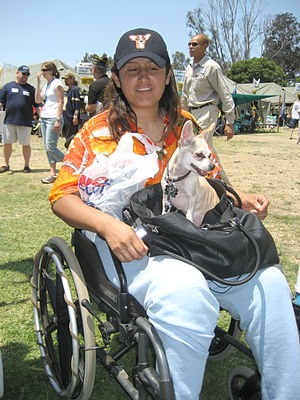 Homeless Woman Iraqi War Veteran in Wheelchair...