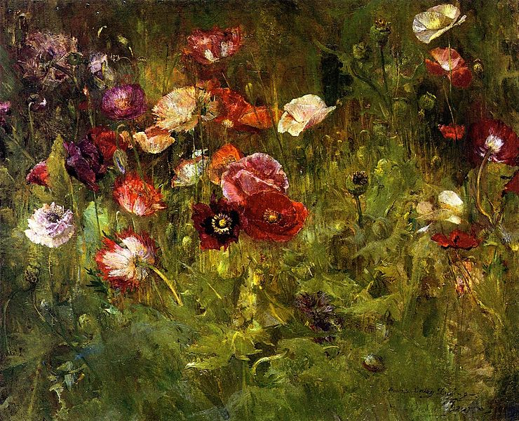 File:A Bed of Poppies-Maria Oakey Dewing.jpg