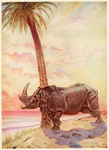 Just So StoriesHow the Rhinoceros Got His Skin