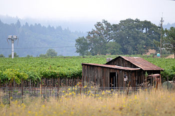 English: Napa_Valley_Photo_D_Ramey_Logan If us...