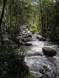 Ambro creek, Monti Sibillini National Park, ne...