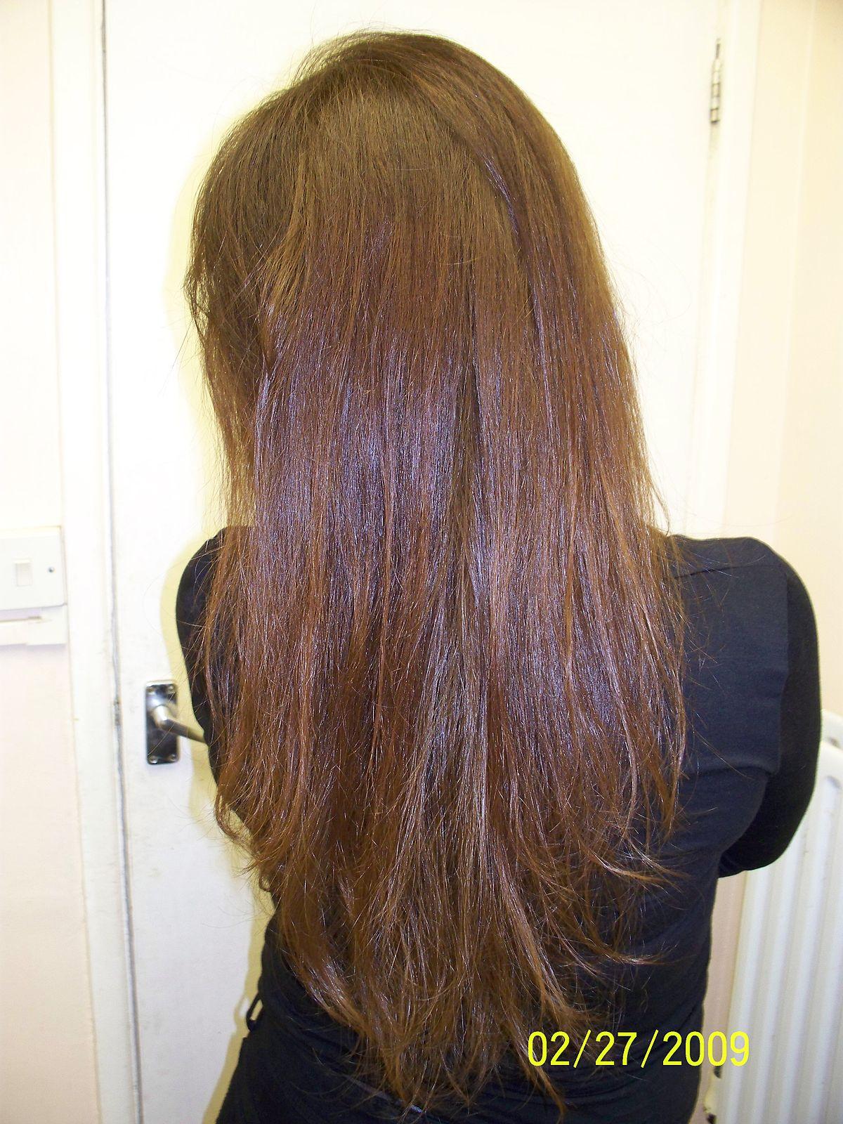Hair  Simple English Wikipedia the free encyclopedia