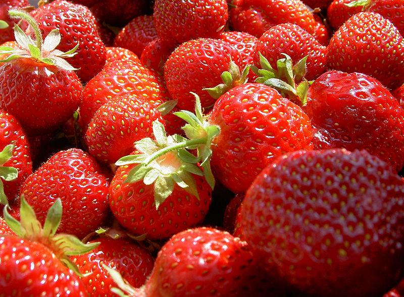 ไฟล์:Erdbeeren-WJP-1.jpg