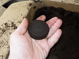 The Ground to Ground Primer - Coffee Grounds for the Garden (2/6)
