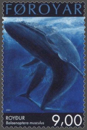 Faroe stamp 402 blue whale (Balaenoptera musculus)