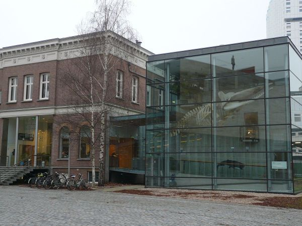 Natural History Museum Rotterdam - Wikipedia