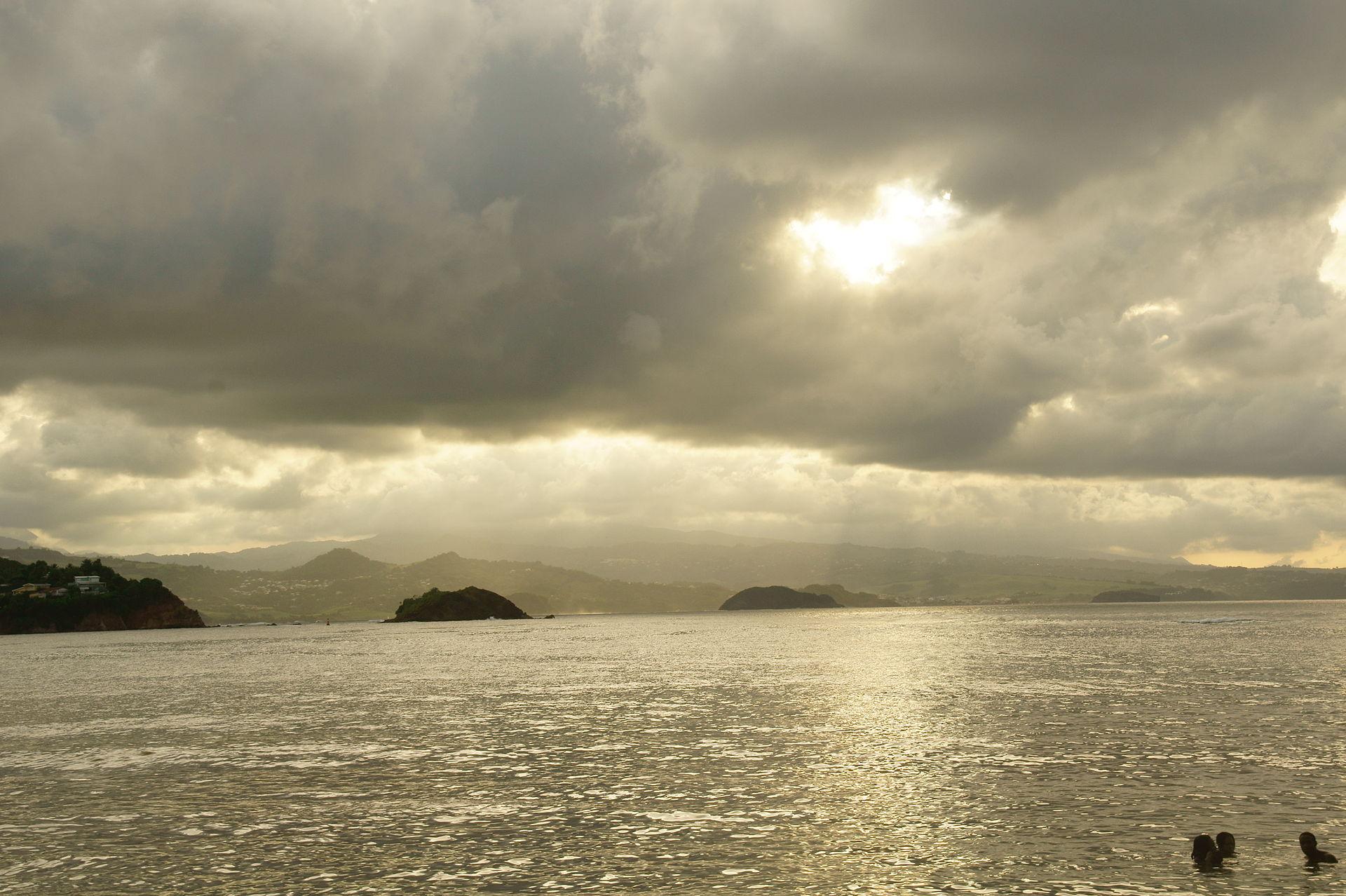 Tartane Martinique Wikipdia
