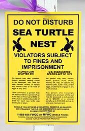 leatherback sea turtle food web diagram 2003 pontiac vibe radio wiring wikipedia legal notice posted by nest at boca raton florida