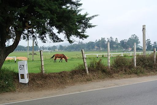 Marker on the A5 highway in Nuwara Eliya
