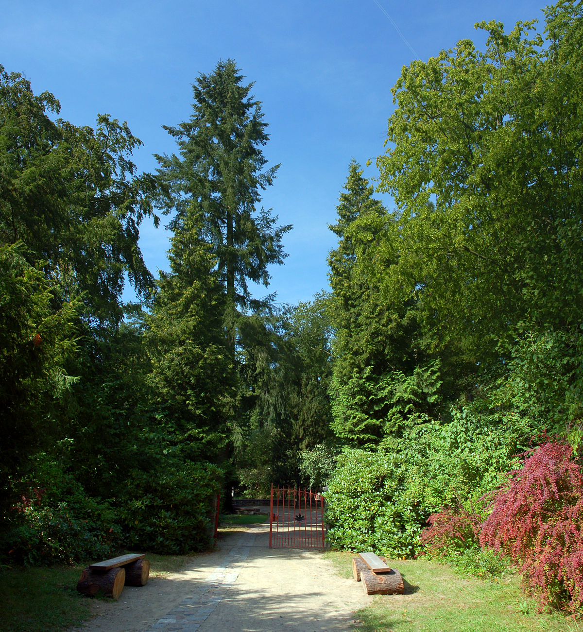 Forstbotanischer Garten Eberswalde  Wikipedia