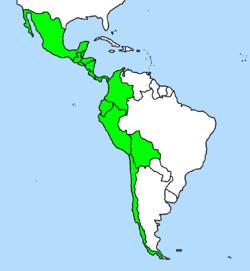 Capsicum pubescens  Wikipedia la enciclopedia libre