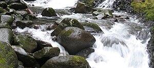 English: Oneonta Creek, Columbia Gorge, Trail #424