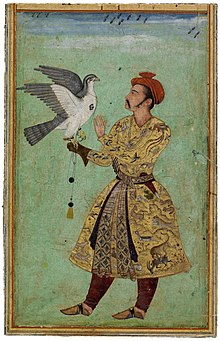 A Clever Crow Will Always Paint Its Feather Black : clever, always, paint, feather, black, Falconry, Wikipedia