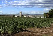 Produção de milho no Colorado