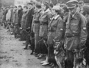 Soviet military dog training school in Moscow ...