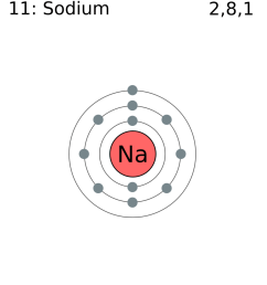 file electron shell 011 sodium png wikimedia commons diagram for sodium atom diagram for sodium [ 936 x 1024 Pixel ]