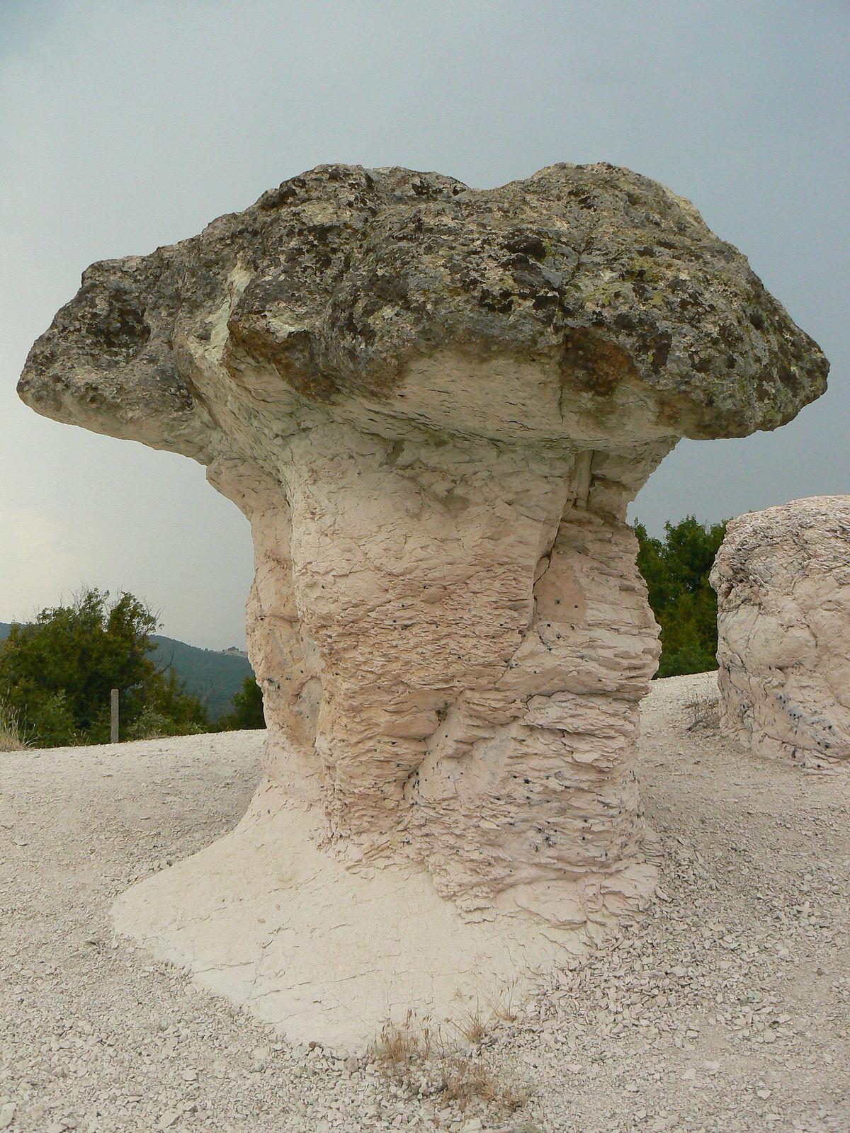 The Stone Mushrooms  Wikipedia
