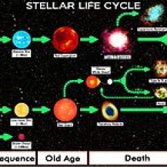 Diagram Of A Low Mass Star Life Cycle Bones Human Skeleton Stellar Evolution Wikipedia Complete Chart