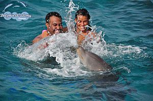 English: Start your vacation with a splash