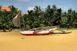 Flickr - ronsaunders47 - SRI LANKAN FISHING BOAT. 2