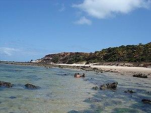 Love beach in Rio Grande do Norte, Brazil.