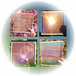 A selection of dye-sensitized solar cells