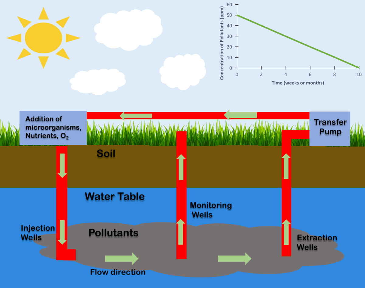 hight resolution of in situ bioremediation