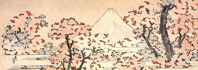 ファイル:Mount Fuji seen throught cherry blossom.jpg