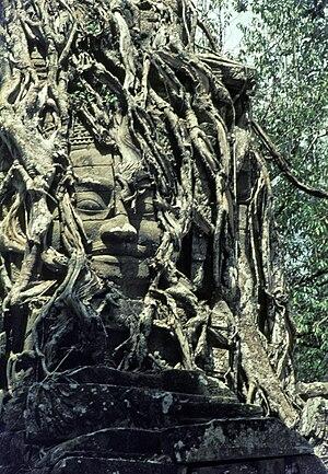 Angkor Wat, Kamboscha