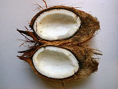 Coconut split