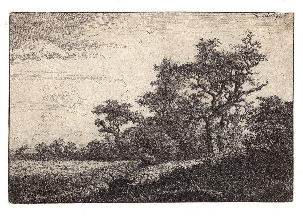 Grainfield Edge Of Wood - Wikipedia