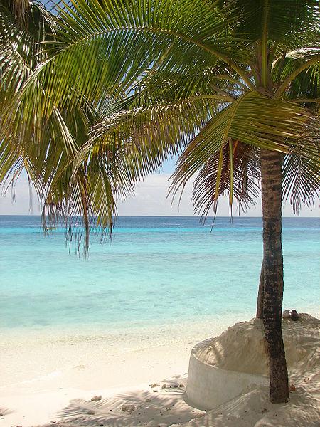 Fil:Maldives 00155.JPG