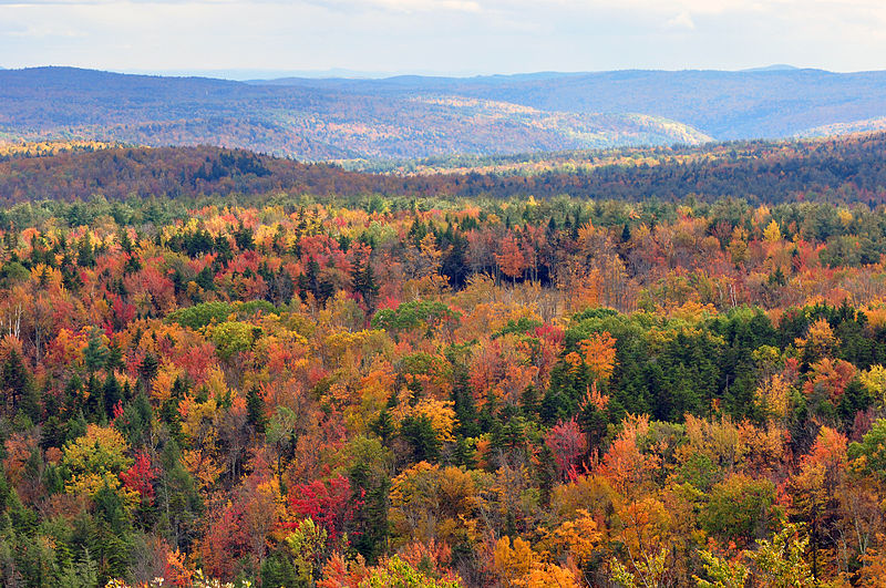 File:Vermont fall foliage hogback mountain.JPG