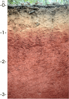 soil profile diagram of michigan wiring gfci backwards schematic list u s state soils wikipedia layers alabama bama
