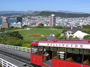 Photo taken from Wellington Botanic Garden loo...