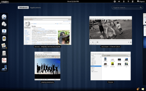 The Gnome 3.0 desktop