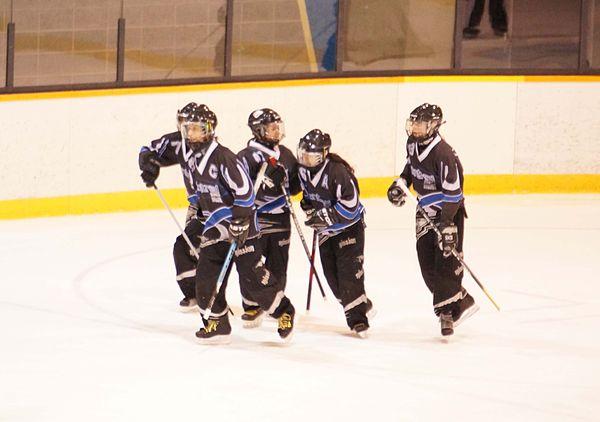 Variations of ice hockey