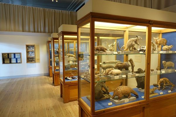 Stockholm Swedish Museum of Natural History