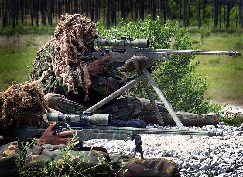 Dosya:Royal Marines snipers displaying their L115A1 rifles.jpg