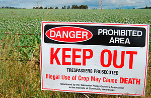 Warning sign outside Opium poppy plantation (P...