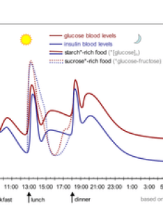 The fluctuation of blood sugar red and lowering hormonee insulin blue in humans during course  day with three meals also level wikipedia rh enpedia