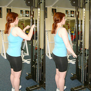 The pushdown is used to exercise the triceps muscle.
