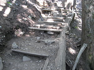 English: Part of the Grouse Grind in Vancouver...