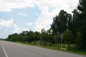 Looking south down Florida State Road 29 in th...