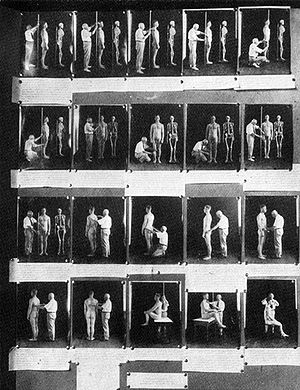Anthropometry demonstrated in an exhibit from ...
