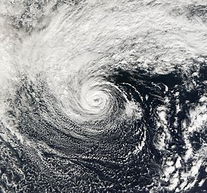 The 2006 central Pacific cyclone