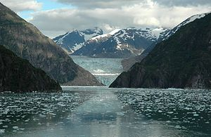7935 Near Tracy arm fjord, Alaska
