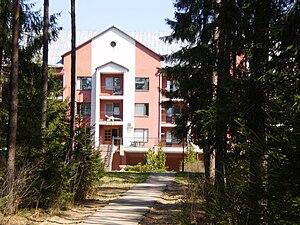 "Sanatorium ""Borovoe"""