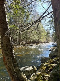 English: Bigelow Brook in Eastford, CT along N...