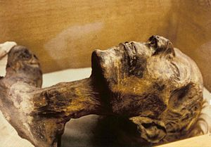 English: Mummy of 19th dynasty King Rameses II.